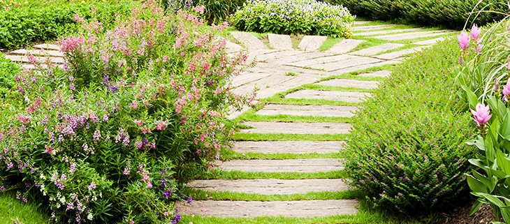 Limestone steps in luscious green garden